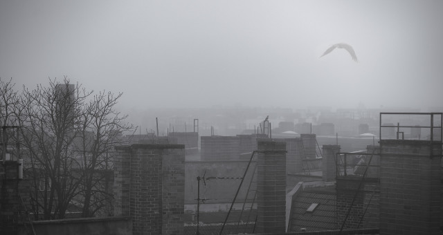 Berlin im Nebel